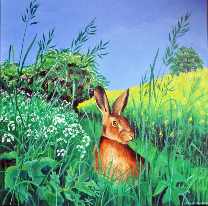 May hare