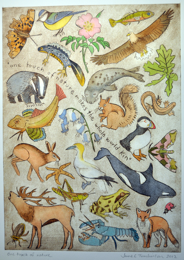 A painting of British wildlife