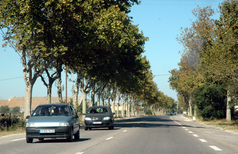 Postcard from Arles: the Road to Tarascon