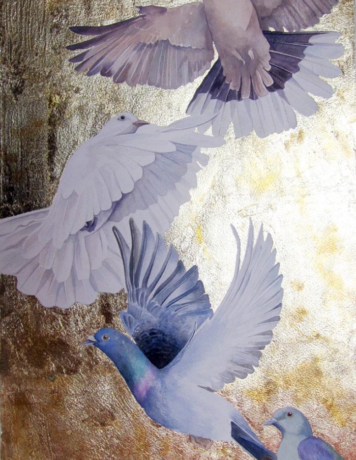 Darwin's doves