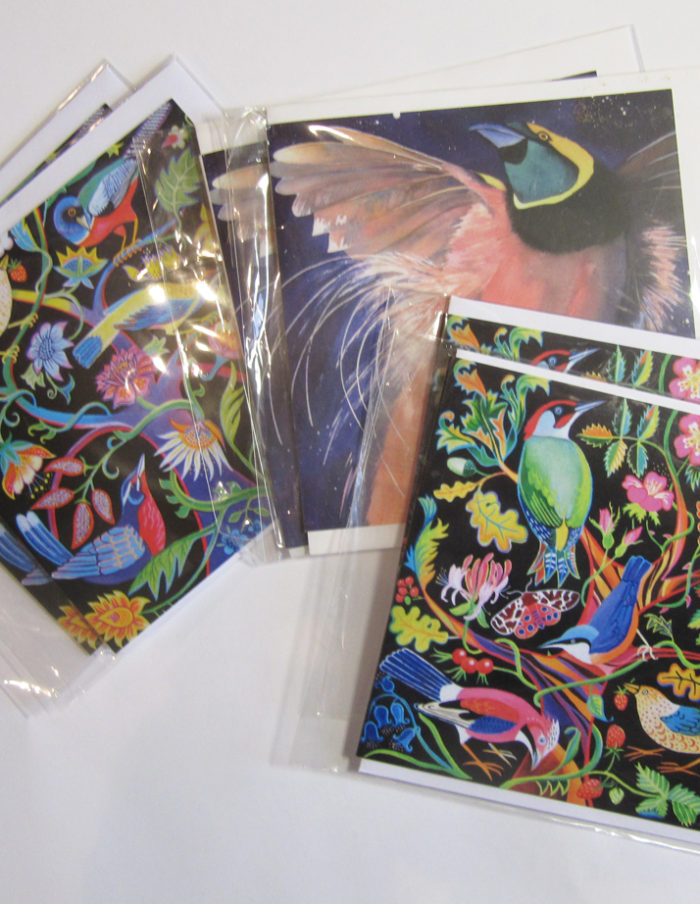 beautiful birds greetings cards