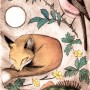 Fox and perch