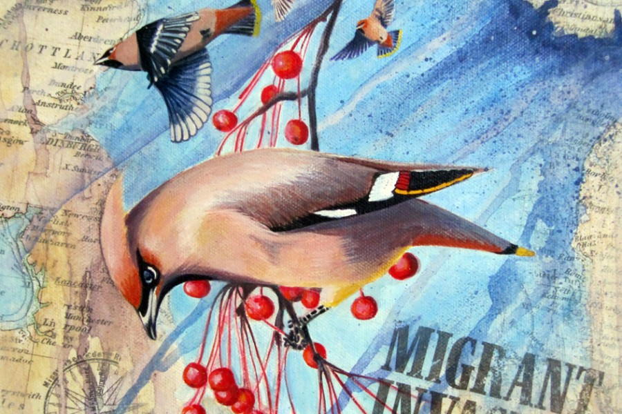 Migrant invasion