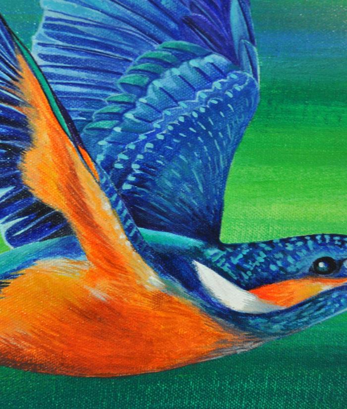 whoosh kingfisherDETAIL3