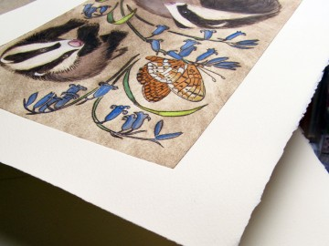 What is a drypoint: badgers and bluebells