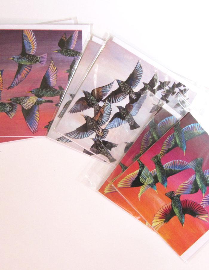 Starlings greetings cards