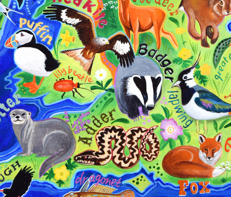 British Wildlife, Wildlife of the British Isles