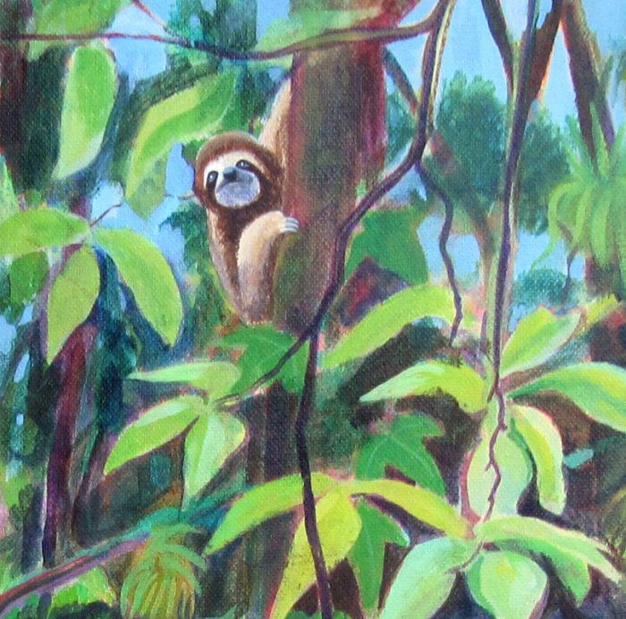 Rainforest Central America