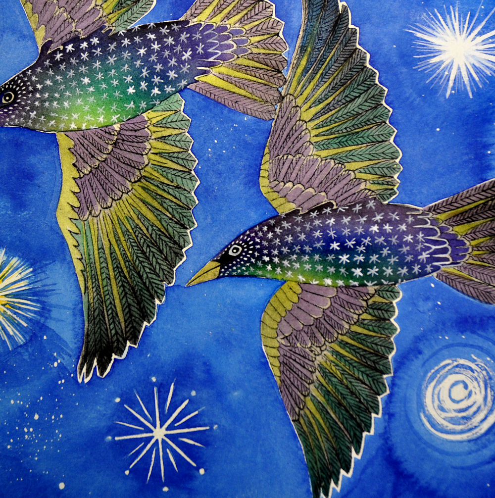 Two starlings in flight - detail