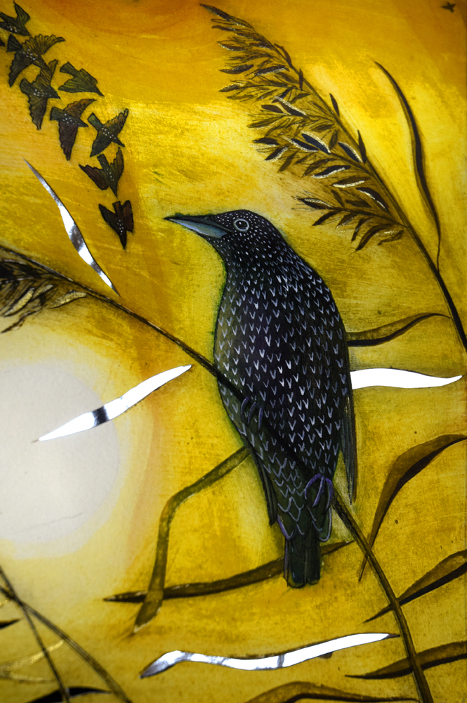 Starling in the reeds detail