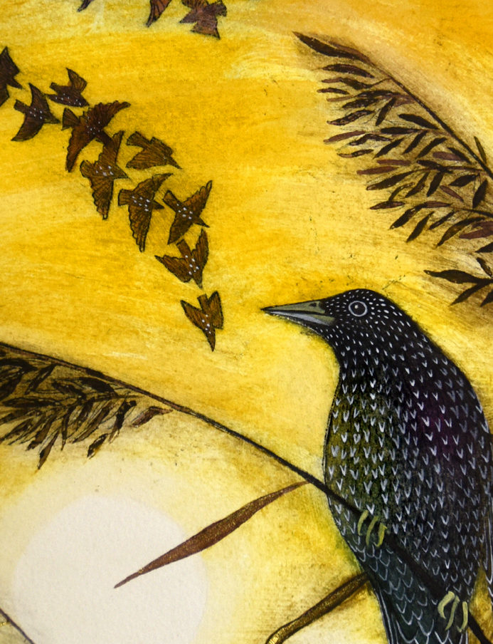 Starling-reeds-version3-detail