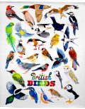 Picture of British Birds tea towel