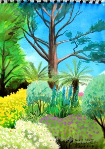 Watercolour sketch of Tresco Abbey Gardens