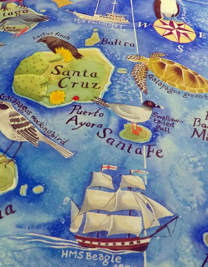 Galapagos map HMS Beagle