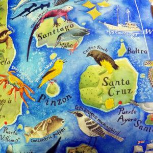 Galapagos map Santa Cruz