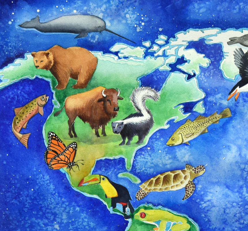 Animal map of the world North America