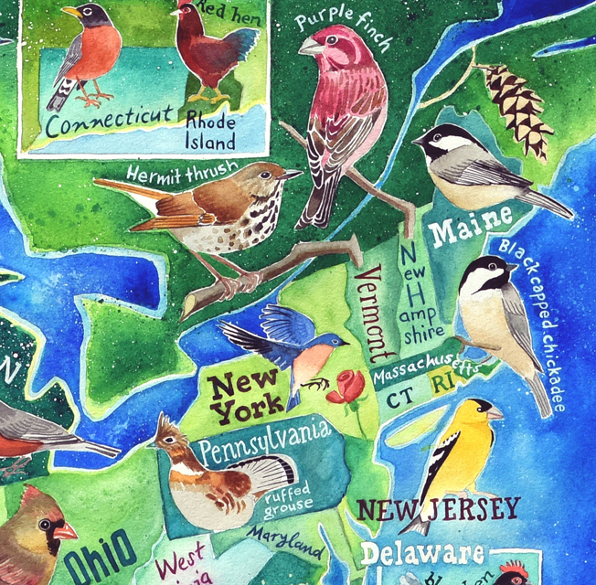 US state birds