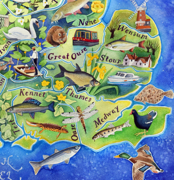 British rivers - detail of England from a painting by Jane Tomlinson