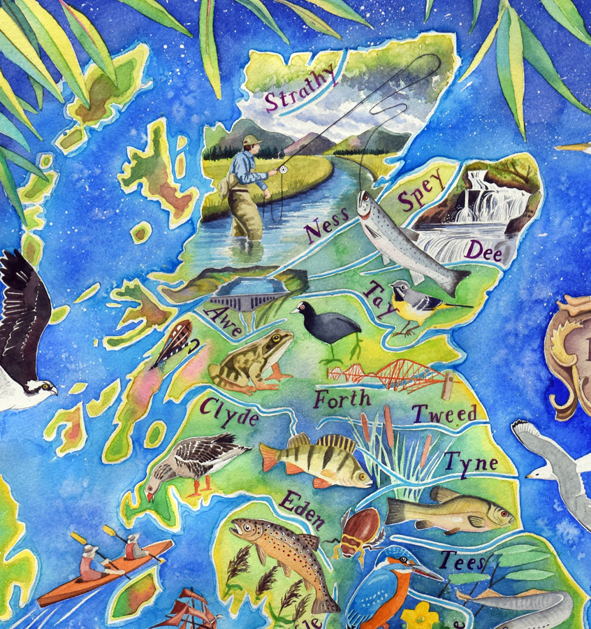 British rivers - detail of Scotland from a painting by Jane Tomlinson