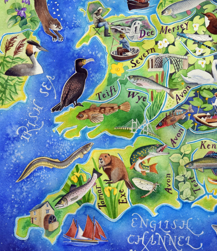 British rivers - detail of Wales and the west country from a painting by Jane Tomlinson
