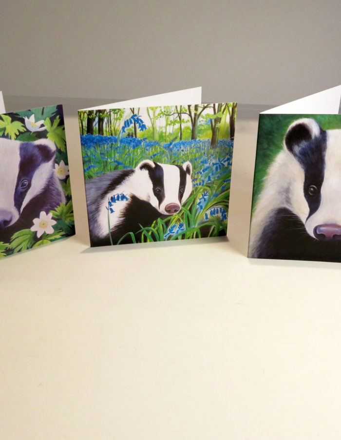 Badgers greetings cards