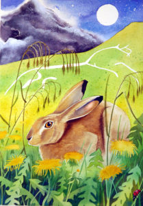 White Horse Hare, watercolour, 2007