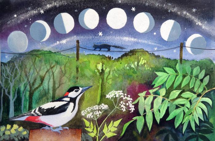 Woodpecker moon