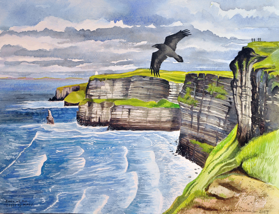 Raven at the Cliffs of Moher