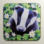 Badger and wood anemones coaster