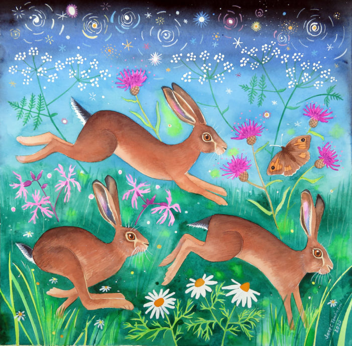 Meadow brown hares - painting by Jane Tomlinson