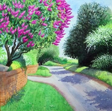 Lilac on Pigeon House Lane