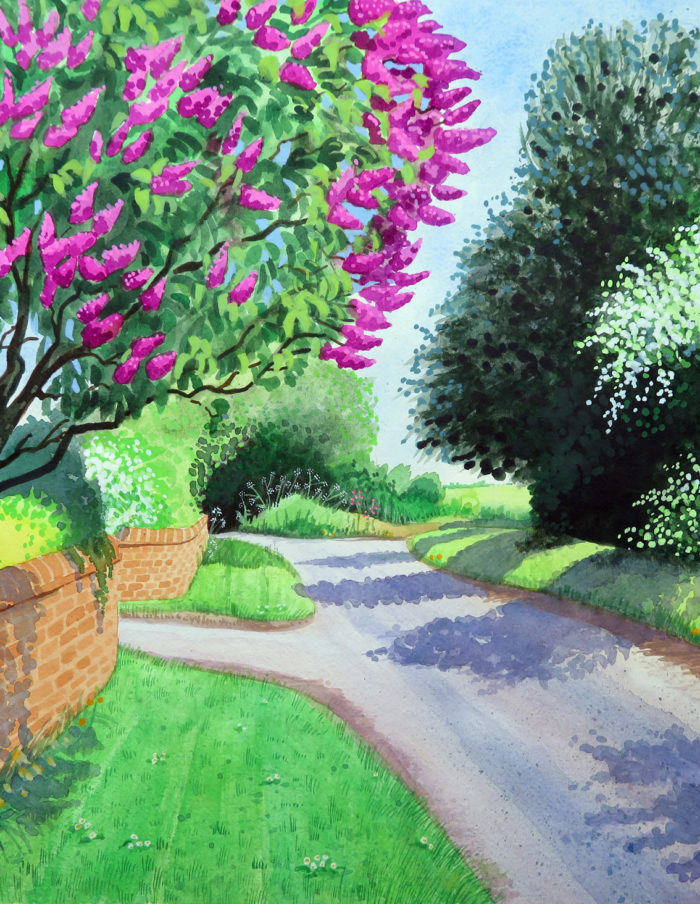 Lilac on Pigeon House Lane