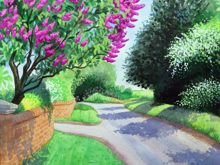 The Arrival of Spring on Pigeon House Lane