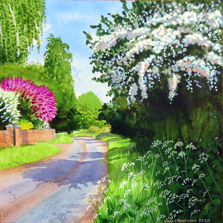 May tree on Pigeon House Lane