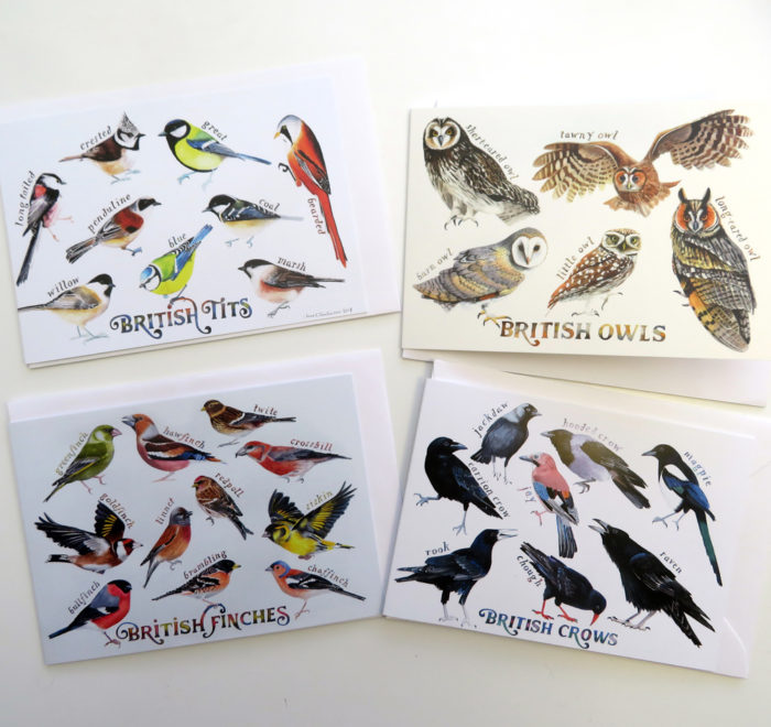british bird greetings cards