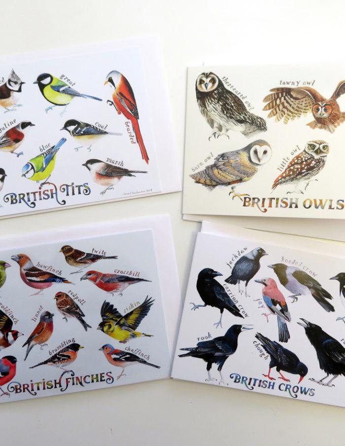 british bird greetings cards