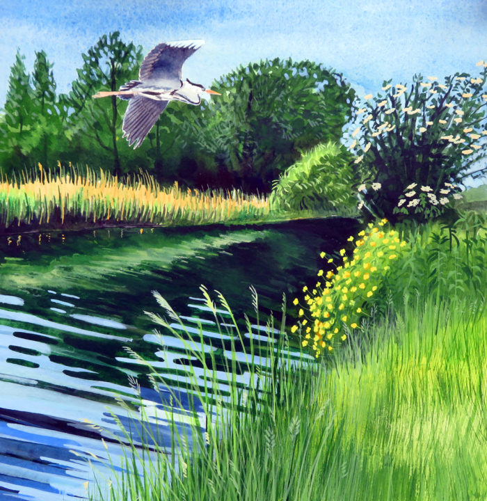 Heron over the Thames