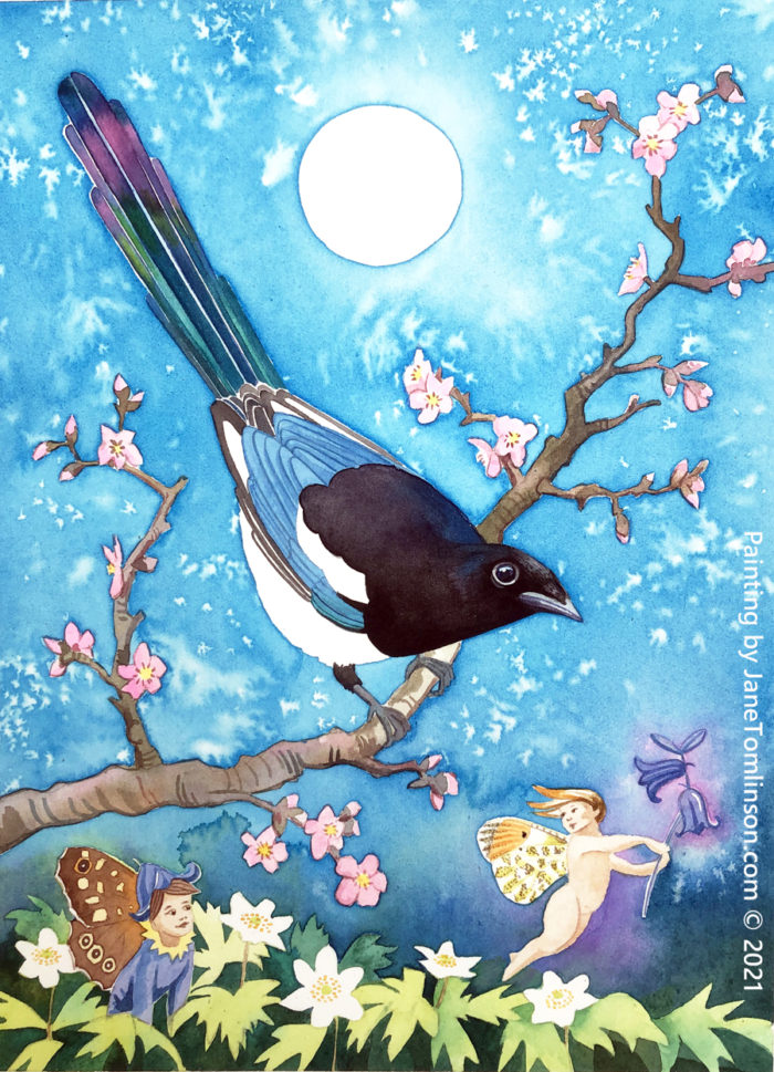 Painting of a magpie called Joy with fairies