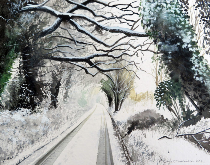 Snowy boughs on the lane