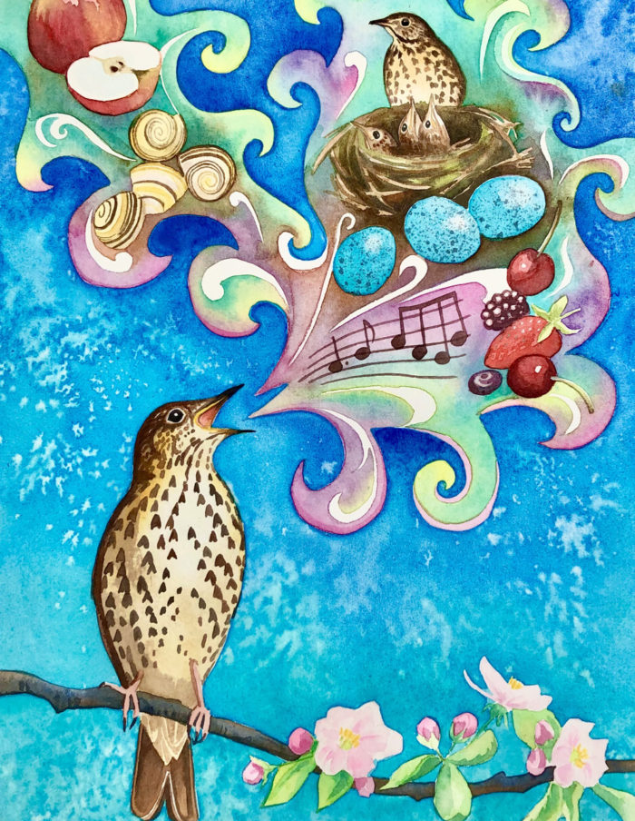 painting of a song thrush singing