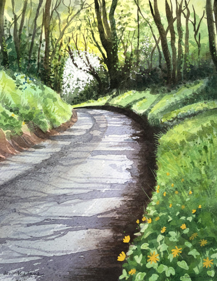 Celandines down the lane banner