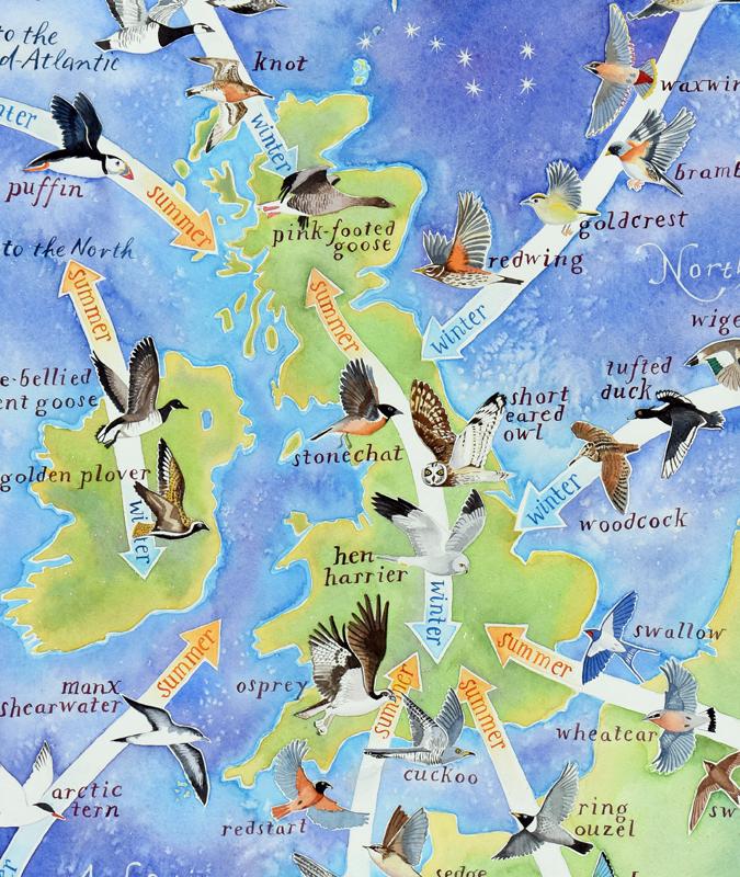 Bird migration map to the British Isles